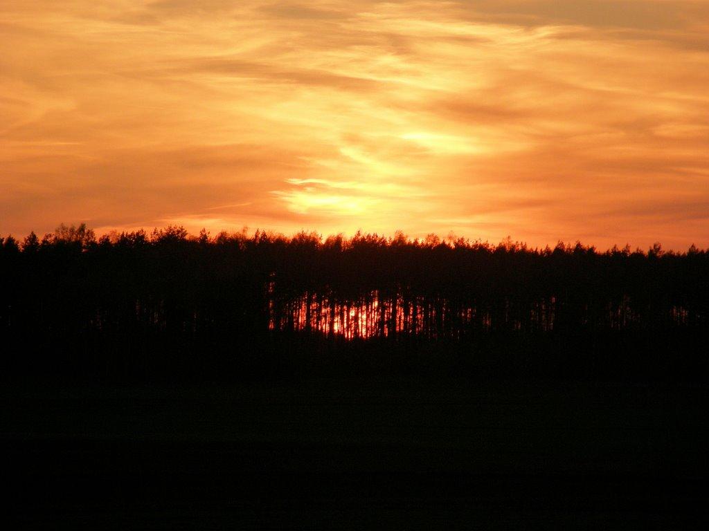 Wspólne podziwianie zachodów słońca.