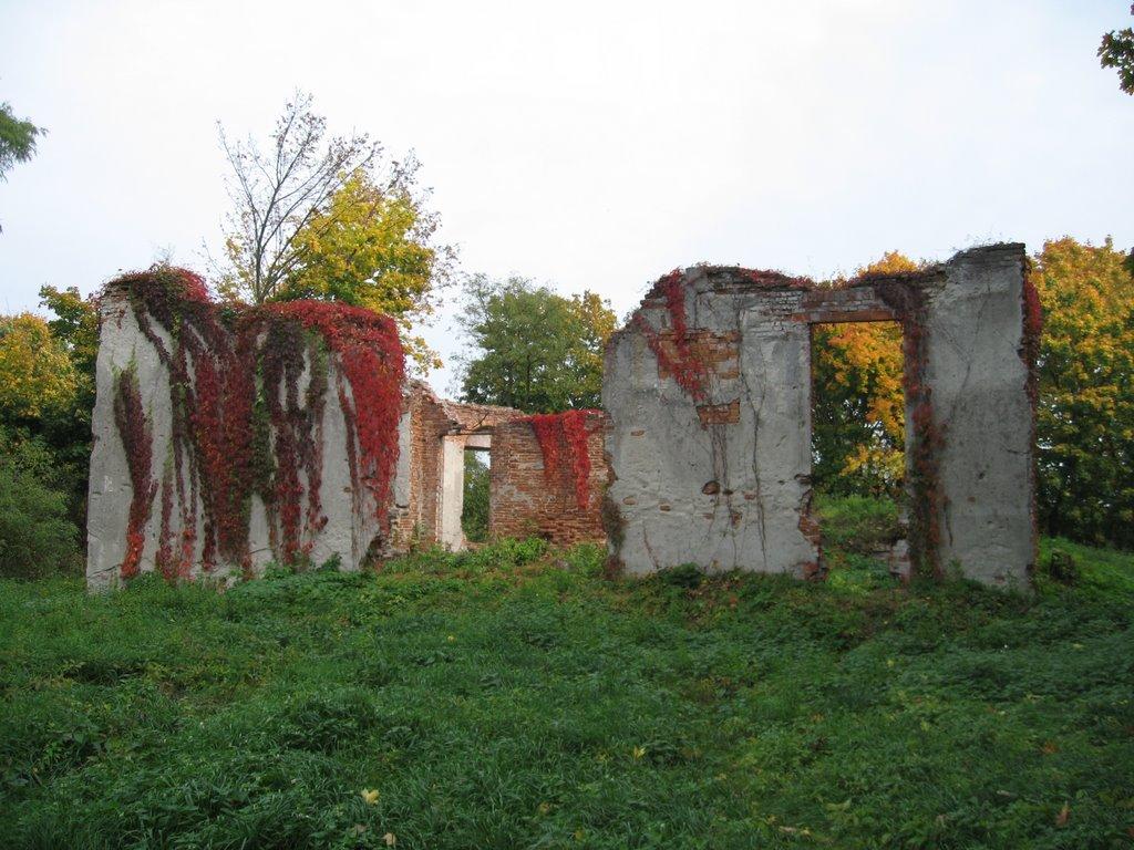 Jeżeli ciut zboczycie ze szlaku nad Jeziorem Góra, możecie obejrzeć ruiny letniego pałacyku Poniatowskich (XVIII w.).